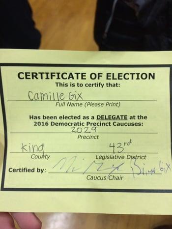 Delegate Election