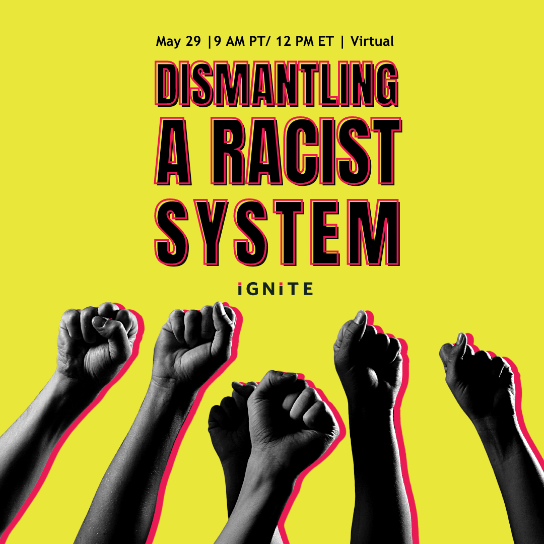 Dismanting a racist system ignite training
